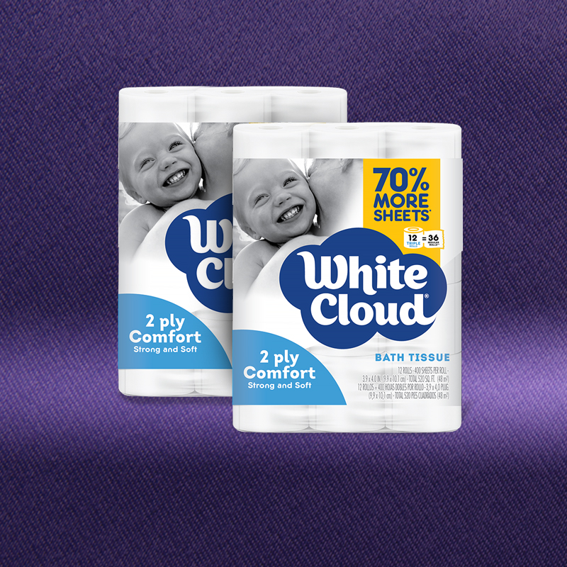 Two 12-Roll Packages of 2-Ply Comfort Bath Tissue